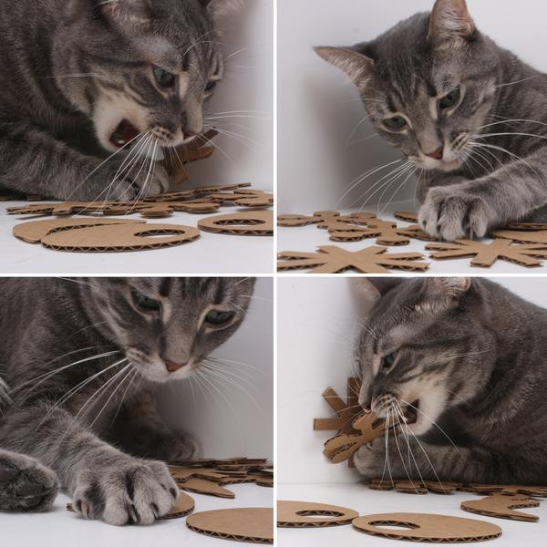 Eco Flyers - Eco-friendly Cardboard Cat Toys