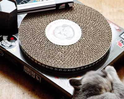 Cat Scratch Turntable Feature