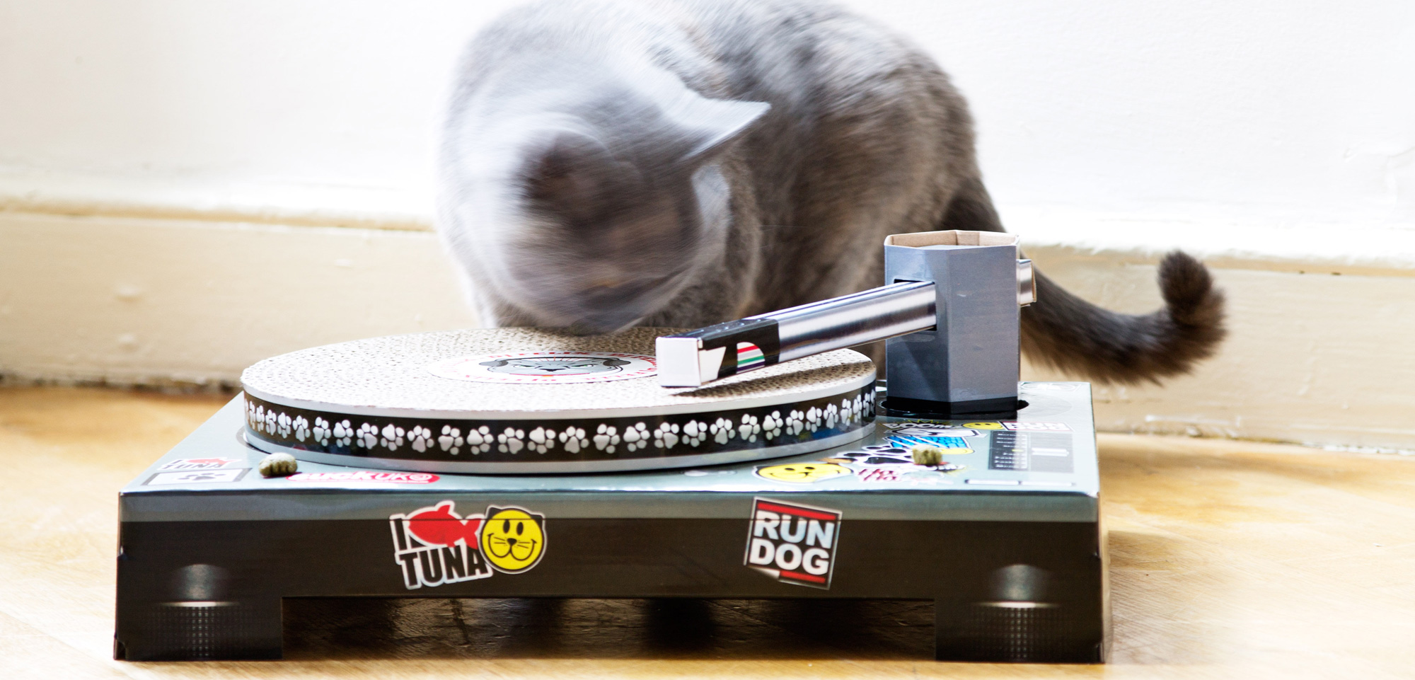 Cat Scratch Turntable banner
